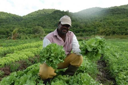 photos agriculteurs 067